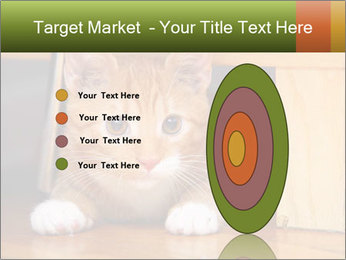 Little Red Cat PowerPoint Template - Slide 84