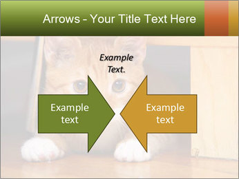 Little Red Cat PowerPoint Template - Slide 90