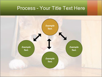 Little Red Cat PowerPoint Template - Slide 91