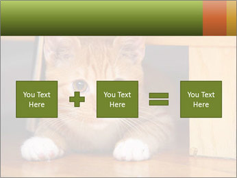Little Red Cat PowerPoint Template - Slide 95