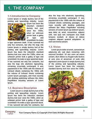 0000091187 Word Template - Page 3