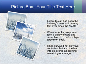 Winter Frosty Morning PowerPoint Template - Slide 17