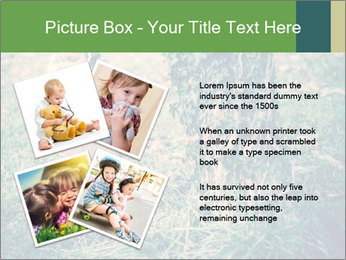 Small Girl In Forest PowerPoint Template - Slide 23