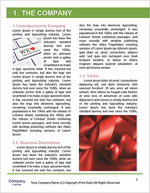 0000091195 Word Template - Page 3