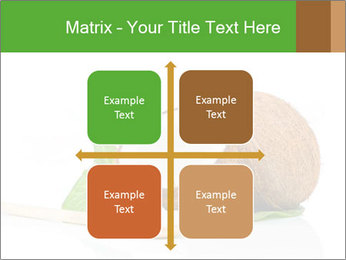 Coconut with green leaf and wooden spoon PowerPoint Templates - Slide 37
