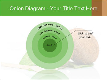 Coconut with green leaf and wooden spoon PowerPoint Template - Slide 61