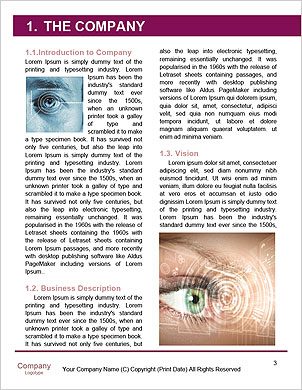 0000091207 Word Template - Page 3