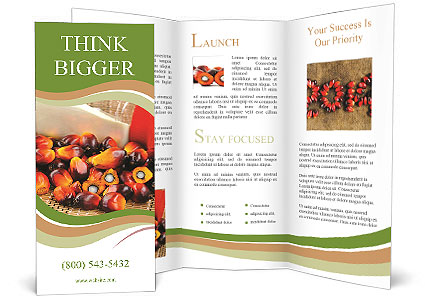 0000091208 Brochure Templates