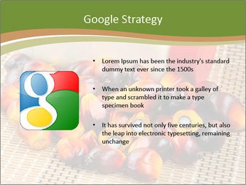 Close up of fresh oil palm fruits PowerPoint Templates - Slide 10