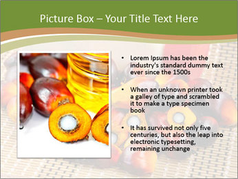Close up of fresh oil palm fruits PowerPoint Templates - Slide 13