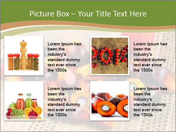 Close up of fresh oil palm fruits PowerPoint Templates - Slide 14