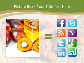 Close up of fresh oil palm fruits PowerPoint Templates - Slide 21