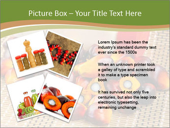 Close up of fresh oil palm fruits PowerPoint Templates - Slide 23