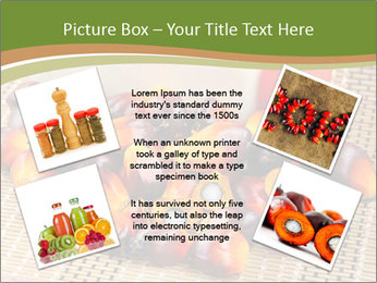 Close up of fresh oil palm fruits PowerPoint Templates - Slide 24