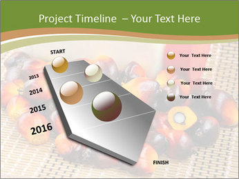 Close up of fresh oil palm fruits PowerPoint Templates - Slide 26