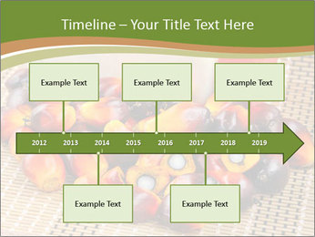 Close up of fresh oil palm fruits PowerPoint Templates - Slide 28