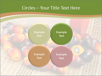 Close up of fresh oil palm fruits PowerPoint Templates - Slide 38