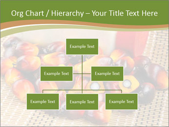 Close up of fresh oil palm fruits PowerPoint Templates - Slide 66