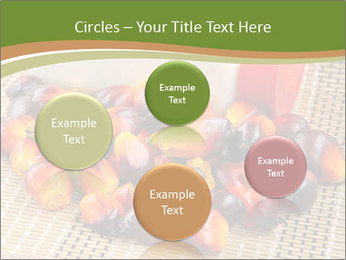 Close up of fresh oil palm fruits PowerPoint Templates - Slide 77