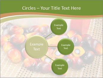 Close up of fresh oil palm fruits PowerPoint Templates - Slide 79