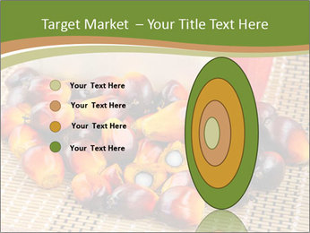 Close up of fresh oil palm fruits PowerPoint Templates - Slide 84