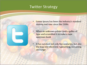 Close up of fresh oil palm fruits PowerPoint Templates - Slide 9