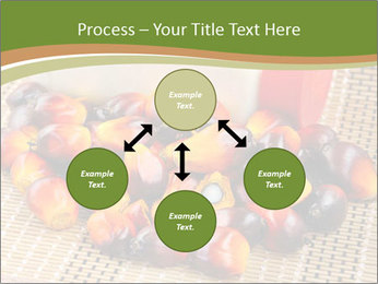 Close up of fresh oil palm fruits PowerPoint Templates - Slide 91