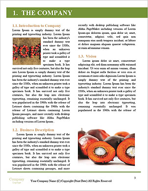 0000091208 Word Template - Page 3