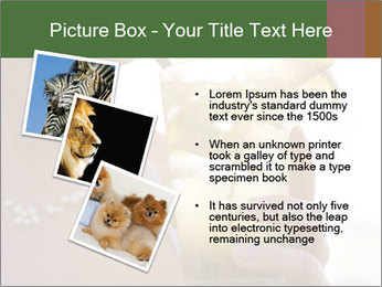 Perfect front PowerPoint Templates - Slide 17
