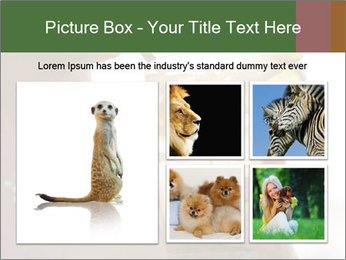 Perfect front PowerPoint Templates - Slide 19