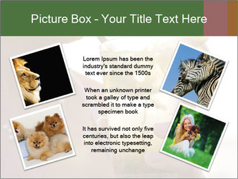 Perfect front PowerPoint Templates - Slide 24