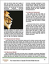 0000091212 Word Template - Page 4