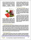 0000091215 Word Template - Page 4