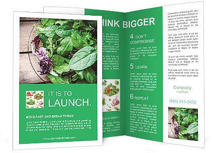 0000091218 Brochure Template