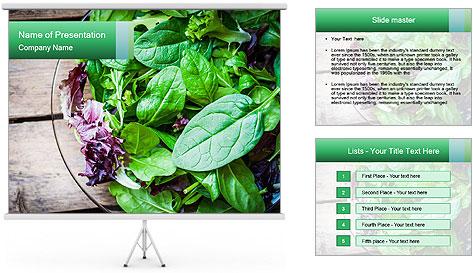 Fresh green salad PowerPoint Template