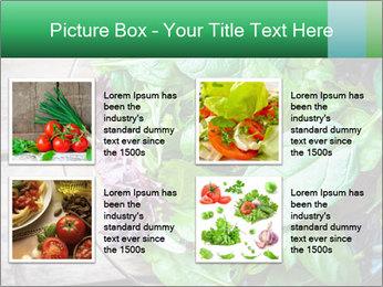 Fresh green salad PowerPoint Templates - Slide 14