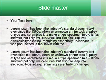 Fresh green salad PowerPoint Templates - Slide 2