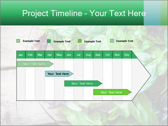 Fresh green salad PowerPoint Templates - Slide 25