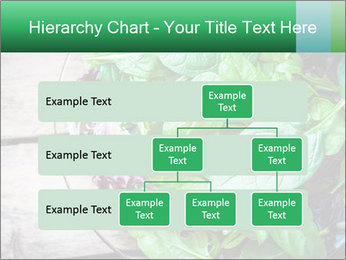 Fresh green salad PowerPoint Templates - Slide 67