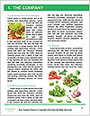 0000091218 Word Templates - Page 3