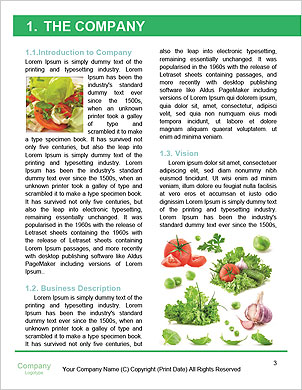 0000091218 Word Template - Page 3