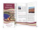 0000091223 Brochure Templates