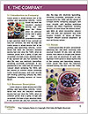 0000091224 Word Template - Page 3