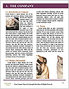 0000091226 Word Templates - Page 3