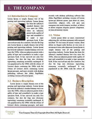 0000091226 Word Template - Page 3