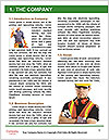 0000091241 Word Template - Page 3