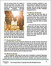 0000091242 Word Templates - Page 4