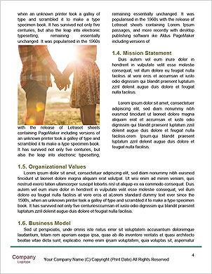 0000091242 Word Template - Page 4