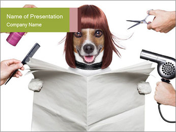 Hairdresser dog PowerPoint Templates - Slide 1