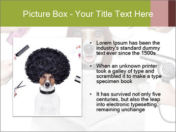 Hairdresser dog PowerPoint Template - Slide 13